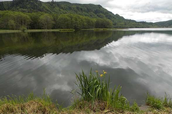Mossyrock to Dog Lake