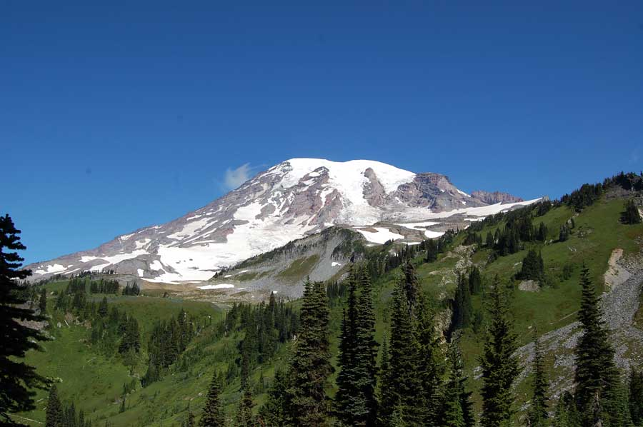 Mazama Ridge HIke - Mount Rainier